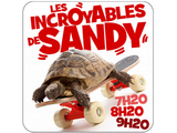 Les Incroyables de Sandy