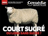 Invitations pour court sucré ou long sans...